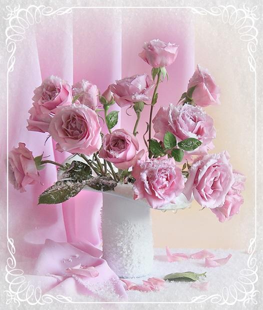rose6863