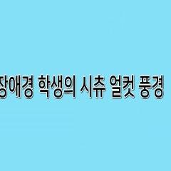 장애경 학생의 시츄의 얼굴컷 풍경 - SD애견미용학원