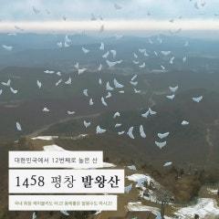 발왕산 명산 선포식 영상