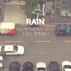 [송송이의 일상 #25] 아침엔 폭우, 오후엔 햇빛 쨍쨍...