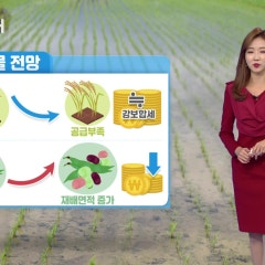 YTN 농업전망대(2019.11.06)- 곡물관측 11월호