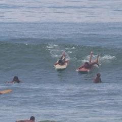양양 서핑 서프월드, 양양 가볼만한 곳