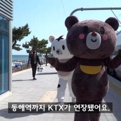 범이, 곰이와 함께 KTX로 떠나는 동해시 캠핑!