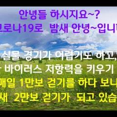 인천 만보걷기 , 인천 이만보 걷기