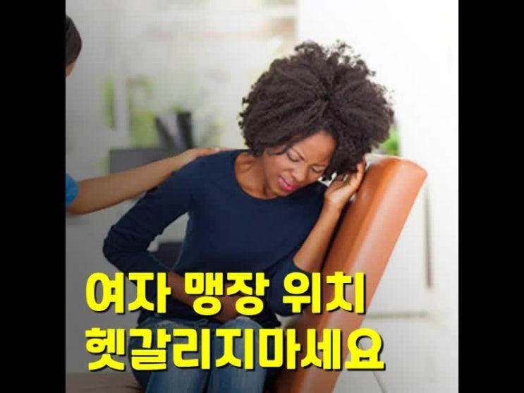 여자 맹장 위치는 남자와 다를까요?