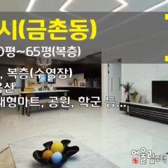 파주 금촌동신축빌라 대형 평형대, 화려한 옵션, 복층(세대 수영장)까지~