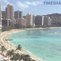 <하와이 한달 살기_가족여행> 타임쉐어 리세일 seller to buyer 로 부터 시작하기