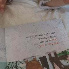 초등영어 책읽기를 위한 기적의 사이트워드!!