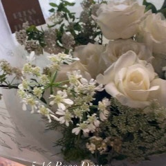 <Blass You Flower - Rose Day, White Rose Handtied >블레스유플라워 / 로즈데이 / 화이트로즈 / 마르샤장미 / 핸드타이드