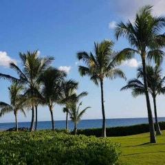 <$13,000> MVC_Marriott Ko Olina Beach 메리어트 코올리나 비치 Weekly 추천 Listing