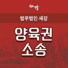 [서울이혼변호사] 양육권 소송 시 유의사항