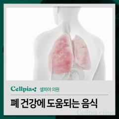 폐 건강에 도움되는 음식 뭐가 있을까요?