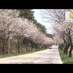 농어촌인성학교 내현권역소개 동영상(KBS 6시내고향)