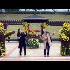 10월의 마지막 주말은 국화향 찾아 거창사건추모공원으로!!
