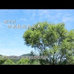 소풍(Slowlife 마을)-중국어