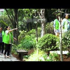 정원, 도시의 숲이 되다