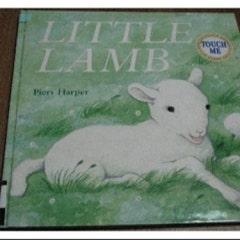 『Little Lamb』