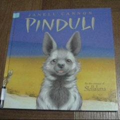 『Pinduli』