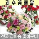 꽃바구니 꽃배달