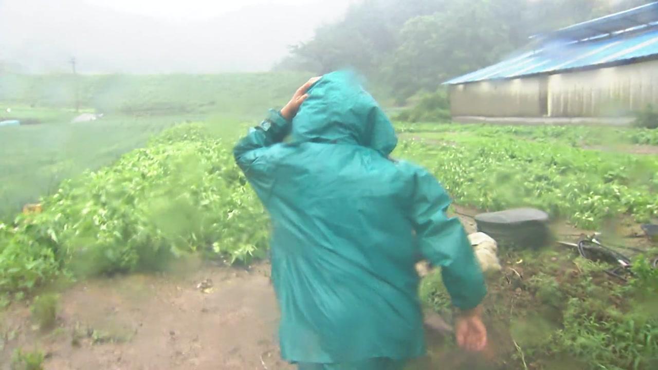 [날씨] 태풍 '다나스…