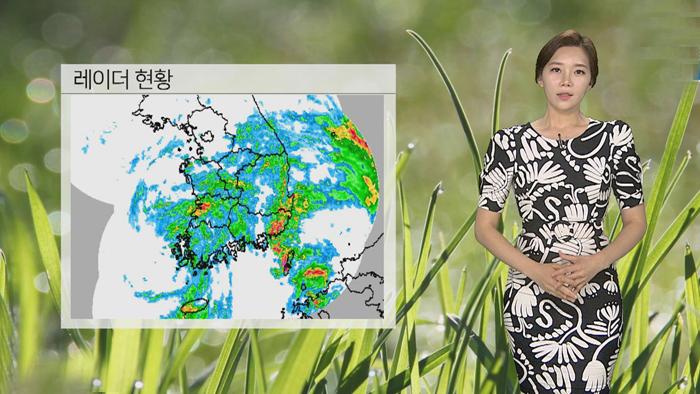 [날씨] 태풍 소멸, 내일까지…