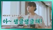 일본어 맛표현 #9 잿방어의 탱글탱글한 식감을 일본어로 표현하면?│일드로 배우는 일본어